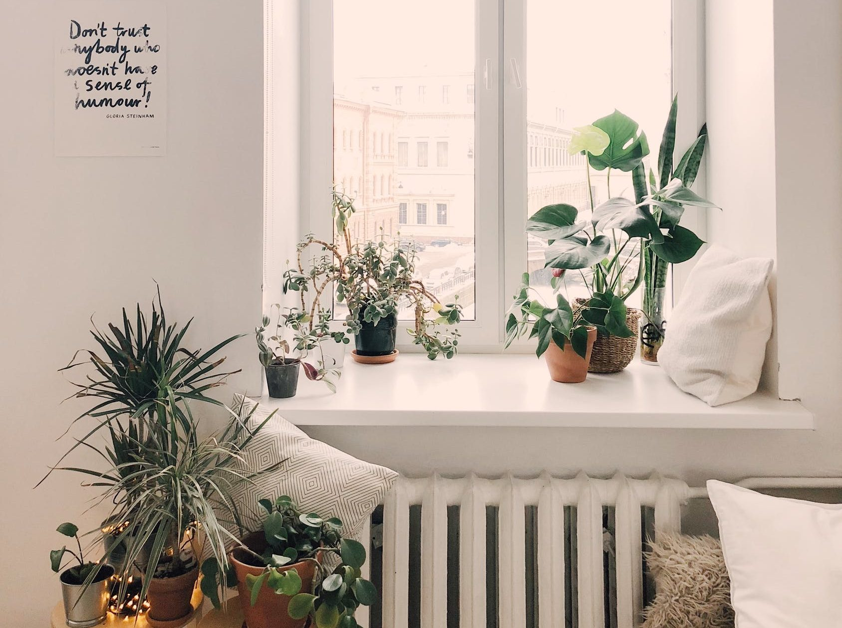 Research proves that ample light and greenery can uplift your day and add to your general well-being.