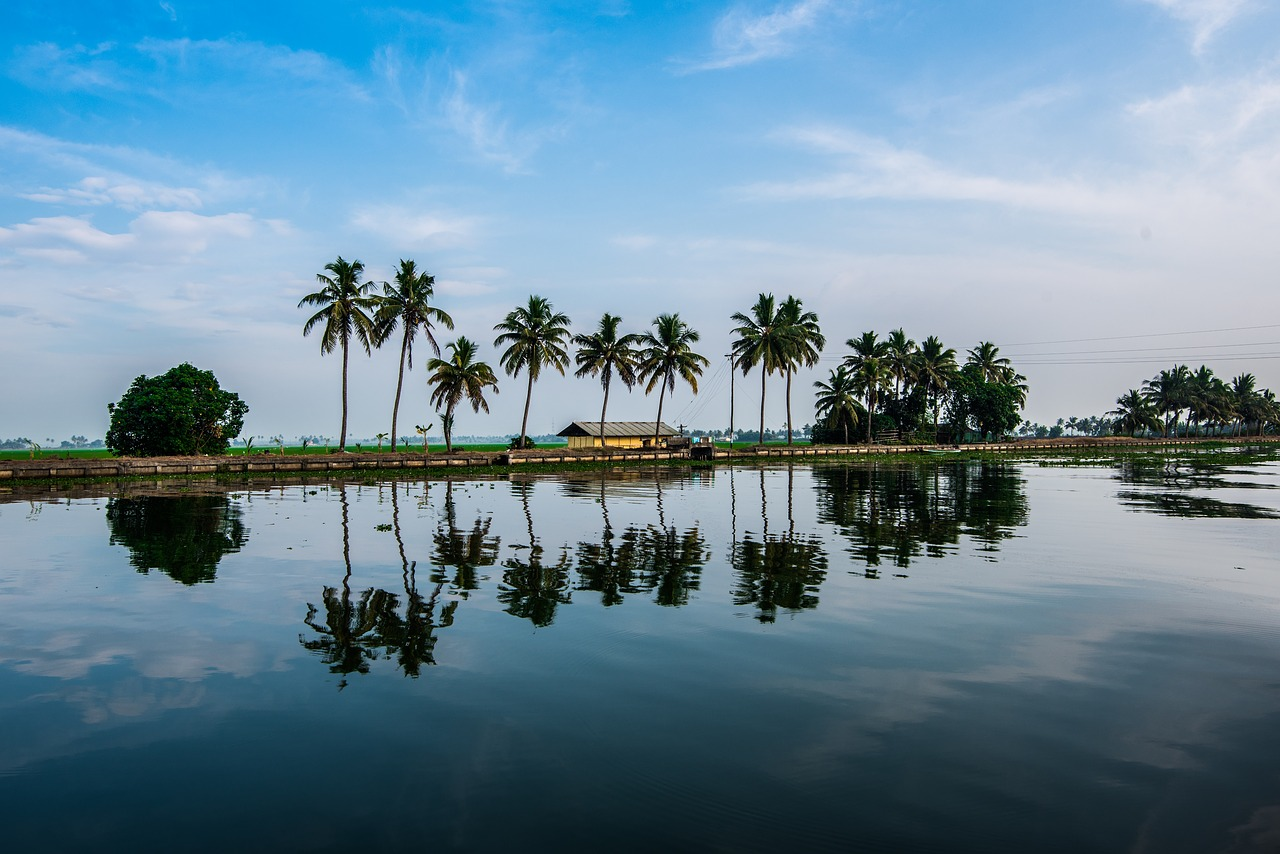 View of the beautiful backwaters of Kerala. Photo by Pixabay